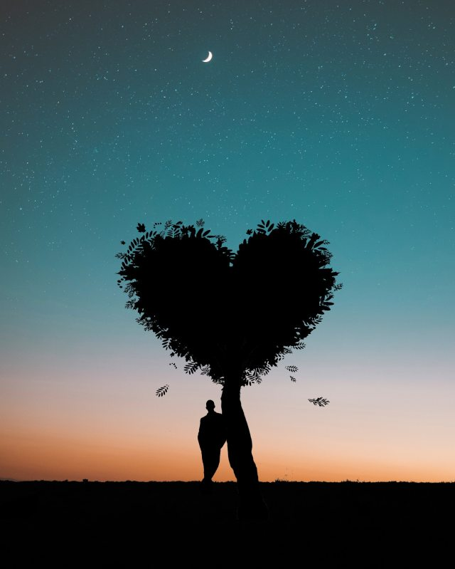silhouette-photo-of-man-leaning-on-heart-shaped-tree-744667.jpg